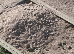 400px-Sandbox